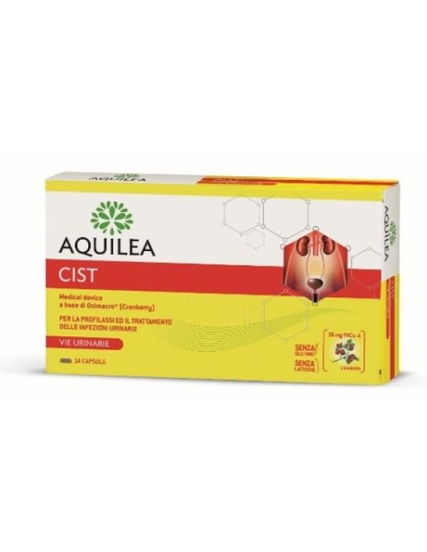 AQUILEA CIST 14CPS